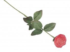 Rosenstiele, ca. 47 cm 1 VE = 100 St. ( = 2 x 50 Stück )